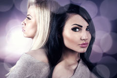 Schoonheidsportret van blonde en brunette Royalty-vrije Stock Foto's