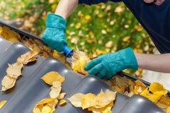 Schoonmakende goten van bladeren stock foto's