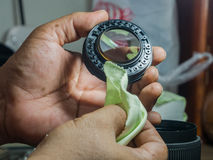 Schoonmakende lens van paddestoel Royalty-vrije Stock Foto's