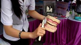 Schoonmakende tanden op plastic model stock video
