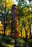 Schoorsteen bij bos Stock Foto