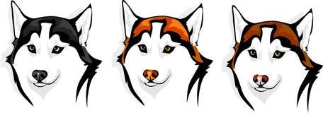 Schor - wolf vector illustratie