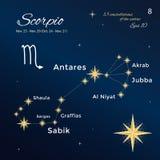 schorpioen Hoog gedetailleerde vectorillustratie 13 constellaties van de dierenriem met titels en eigennamen voor sterren Royalty-vrije Stock Foto's