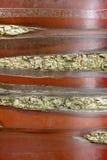 Schors van serrula Prunus Royalty-vrije Stock Afbeelding