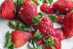 Schotel met aardbeien en melk stock afbeeldingen