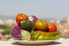 Schotel met verschillende rauwe groenten Royalty-vrije Stock Afbeeldingen