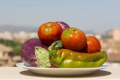 Schotel met verschillende rauwe groenten Stock Fotografie