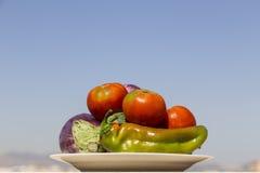 Schotel met verschillende rauwe groenten Stock Afbeeldingen