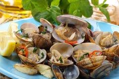Schotel van Portugese tweekleppige schelpdieren Stock Fotografie