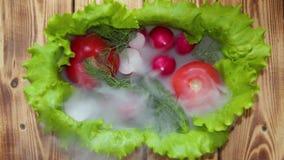 Schotel van sla, tomaten, komkommers en radijzen, die met ochtendmist wordt behandeld Een lichte ochtendwind blaast de mist van d stock footage
