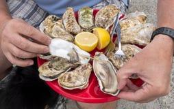 Schotel van verse oesters Royalty-vrije Stock Afbeeldingen