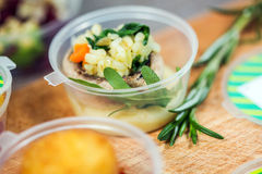 Schotels met vissen en rijst in plastic container Stock Afbeeldingen