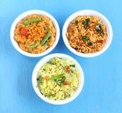 Schotels van de zuiden de Indische Traditionele Vegetarische Rijst Stock Foto