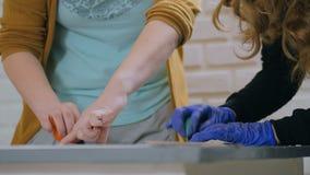 3 schoten Twee vrouwendecorateurs, ontwerpers die houten cirkeldecoratie schilderen stock video