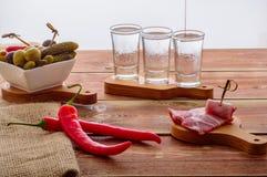 Schoten van wodka royalty-vrije stock foto