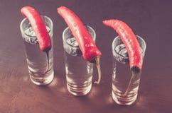 Schoten van wodka en Spaanse peper/schoten van wodka en Spaanse peper op een donkere achtergrond royalty-vrije stock foto's