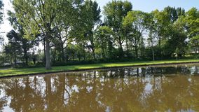 Schoterbos da natureza de Haarlem Fotos de Stock Royalty Free