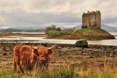 Schots hooglandenlandschap Royalty-vrije Stock Foto