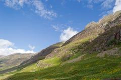 Schots Hoogland stock foto