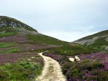 Schotse berg Stock Afbeeldingen
