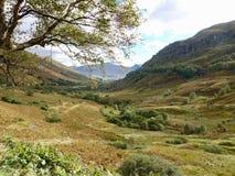 Schotse Nauwe vallei Stock Foto's