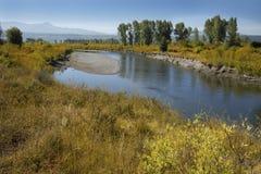 Schotterbank, Büffel-Gabel-Fluss, Jackson Hole, Wyoming stockfotos