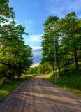 Schotterstraße durch einen Wald Stockbild