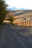 Schotterstraße entlang einem eingezäunten Weizenfeld Lizenzfreies Stockfoto