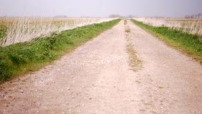 Schotterstraße zwischen zwei Feldern stock footage