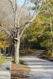 Schotterweg, der ländlichen Friedhof führt lizenzfreies stockfoto