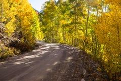 Schotterweg durch Bäume mit Fallfarben Lizenzfreie Stockbilder