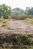 Schotterweg durch zur Baustelle Lizenzfreies Stockbild