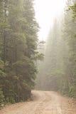 Schotterweg-Herausforderung in den Nebel Stockbild