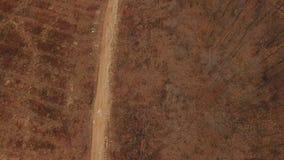 Schotterweg im Wald stock video footage