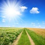 Schotterweg am sonnigen Tag Stockfotos