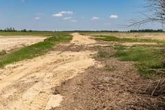 Schotterweg und Ackerland im Mississippi-Delta stockbilder