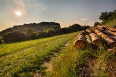 Schotterweg und der Hügel Maly Chlum Stockfotografie