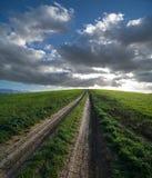 Schotterweg und grünes Feld am Sonnenuntergang Lizenzfreie Stockfotos