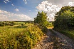 Schotterweg und Wiese Stockfoto