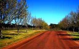 Schotterweg in West-Australien Lizenzfreies Stockbild
