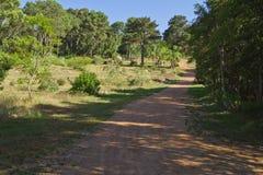 Schotterweg zum Holz Lizenzfreie Stockbilder