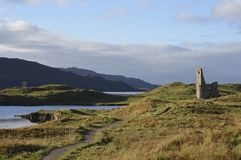 Schottische reizende Natur, Parks und wild lebende Tiere lizenzfreies stockfoto