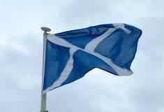 Schottische Saltire Markierungsfahne in der Bewegung Lizenzfreies Stockfoto