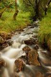 Schottischer Fluss lizenzfreie stockfotografie