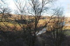 Schottischer Herbst mit Schwarzem auf Gold Lizenzfreie Stockfotografie
