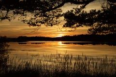 Schottischer Loch Stockfotografie