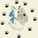 Schottischer Terrierhund Lizenzfreies Stockbild