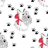 Schottischer Terrierhund Stockfoto