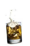Schottischer Whisky, der aus Glas heraus spritzt ein getrennt worden Stockbild