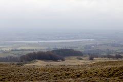 Schottish kullar i dimma i morgonen Arkivbilder